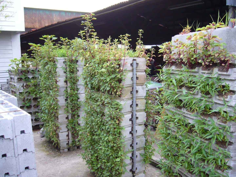 planter-box1